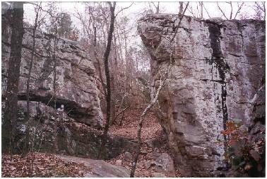 Moss Rock Preserve   Hoover, AL - Official Website